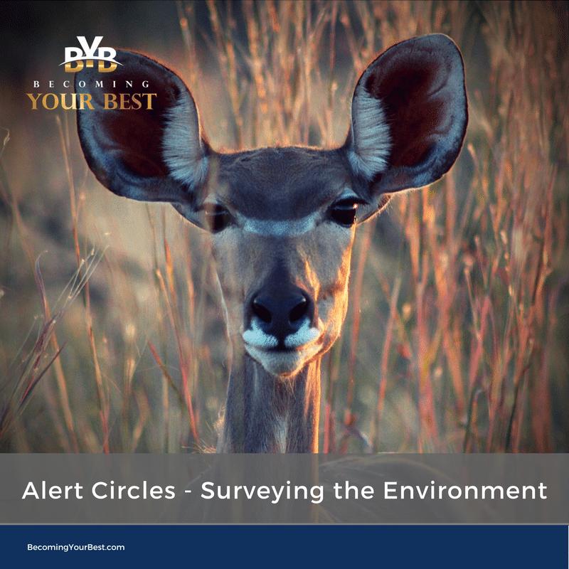 Alert Circles – Surveying the Environment