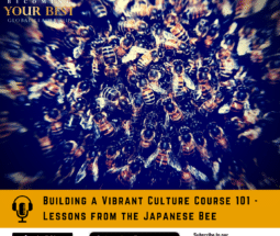Building a Vibrant Culture Course - Lessons from the Japanese Bee - The Stack -podcast-1400x1400 (5)